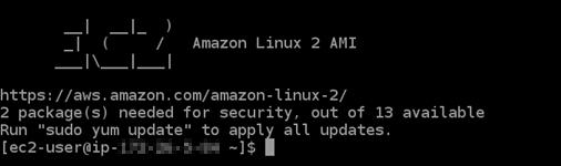 SSH connectione stablished with a Lightsail instance