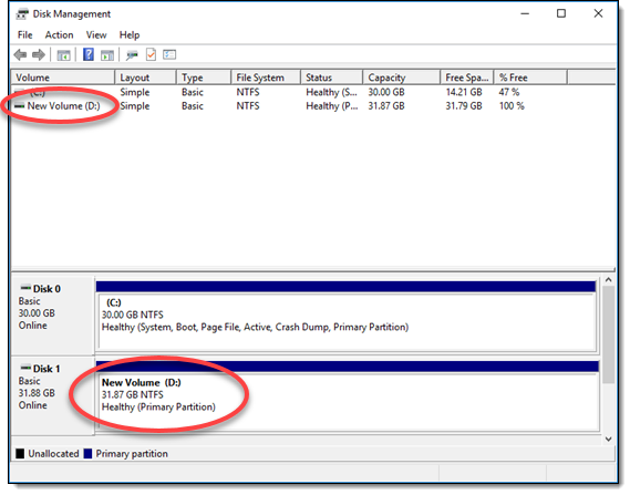 New Simple Volume wizard showing success in Windows Server 2016
