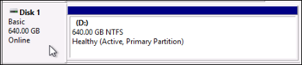 Online disk on a Windows instance.