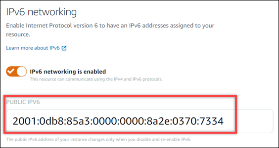 Instance IPv6 address in the Networking tab of the instance management  page.