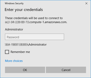 Microsoft Remote Desktop Connection password prompt.