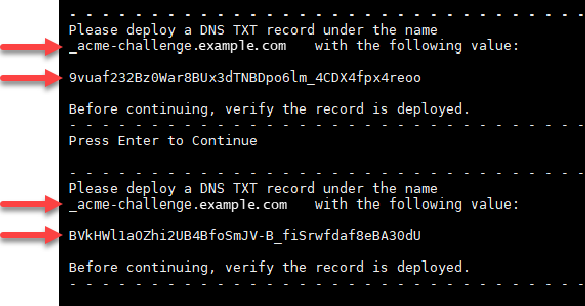 TXT records for Let's Encrypt certificates.