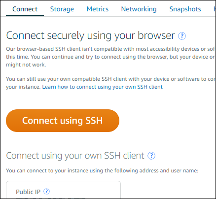Open the browser-based SSH client through the Connect  tab.