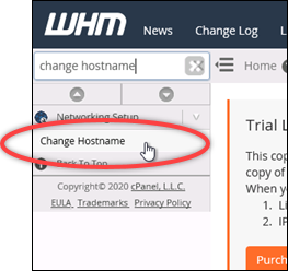 Change the hostname of your cPanel & WHM instance