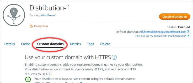 Custom domains tab of a Lightsail distribution.