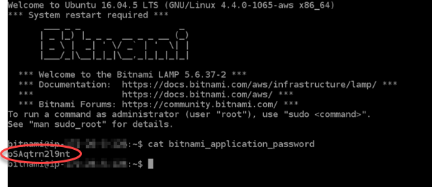 Launching and configuring a LAMP instance in Lightsail.