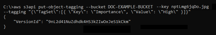 Result of the put-object-tagging command
