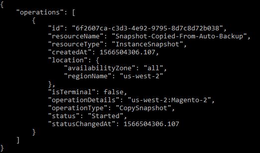 Copy snapshot operation result.