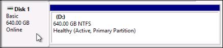 Online disk on a Windows instance.