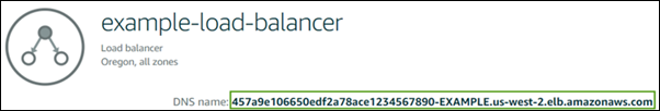 DNS name on the load balancer management page