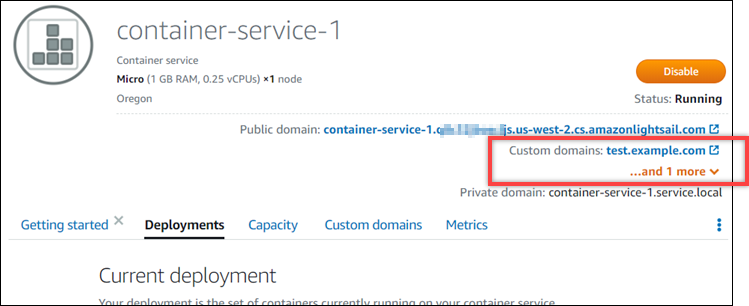 Custom domains for a container service in the Lightsail console