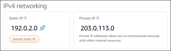 Instance static IP address in the networking tab of the instance management  page.