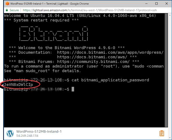 Obtención de la WordPress contraseña del terminal SSH basado en navegador