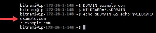 Confirme las variables de entorno del dominio.