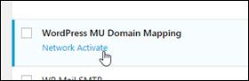 WordPress MU ドメインマッピング。