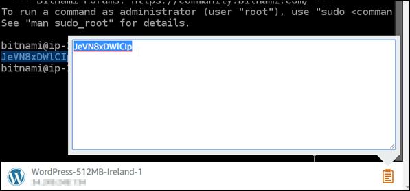 ブラウザベースのクリップボードを使用してテキストをコピーする